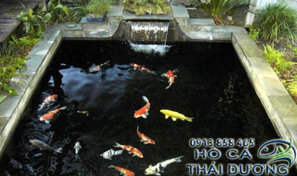 Thiết kế hồ cá koi ngoài trời, hồ cá koi mini, trên sân thượng