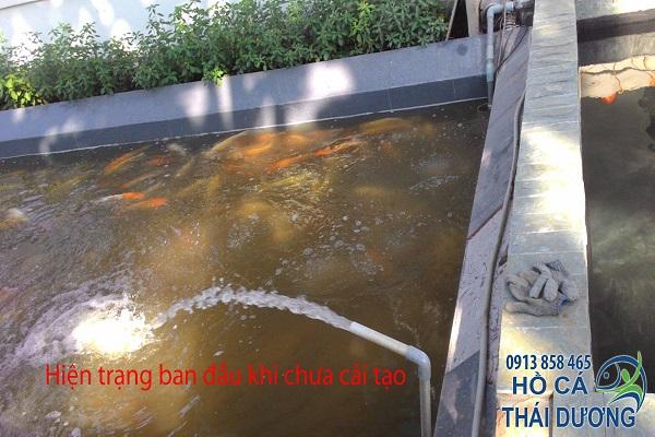 Hiện trạng gốc khi chưa cải tạo hệ thống lọc hồ cá Koi